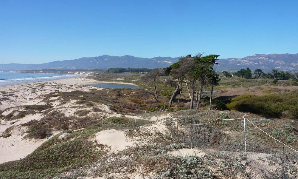 UCSB HOPR Where to Visit in Isla Vista